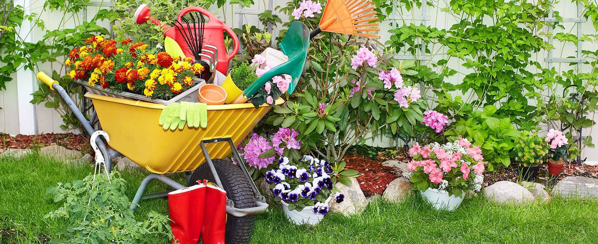 Gardeners Brunswick Park